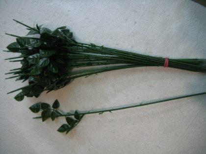 Стебель для розы с пластиковым листом (20шт/уп)