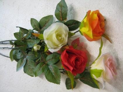 Бутон розы «Эвита»
